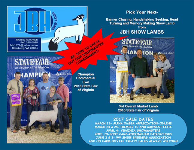 JBH Show Lambs :: For Sale